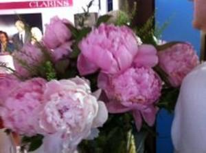 clarins flores